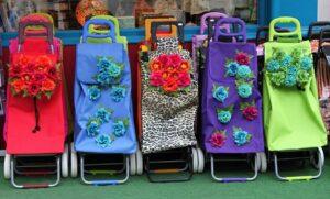 Reisenthel Carrycruiser für den Transport von Einkäufen